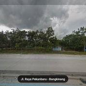 Tanah 20 Hektar, Tempat Di Tepi Jln Lintas Pekanbaru Bangkinang, Hub. 082169923083 Jamil (19946423) di Kab. Kampar