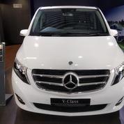 Ready Stock Brand New Mercedes-Benz V260 XLWB 2019 (19948071) di Kota Jakarta Selatan