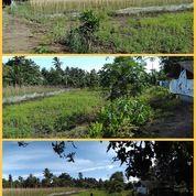 Tanah Ladsng Lokasi Strategis (19965775) di Kota Tomohon