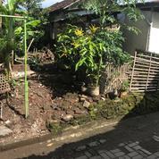 Kavlingan Strategis Sidikan Umbulharjo (19984851) di Kota Yogyakarta
