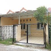 #A1533 Rare Rumah Terawat Sipa Huni Bukit Palma Citraland 1Lt SHM Under 1M (20035543) di Kota Surabaya