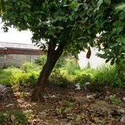Tanah Kavling, Darmajaya Tambun Bekasi (20035759) di Kota Bekasi