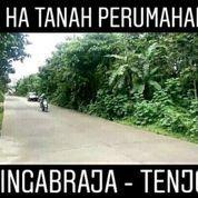 Tanah Tenjo 9 Ha Zona Perumahaan Kab Bogor Jawa Barat (20045123) di Kab. Bogor