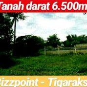 Tanah Tigaraksa 6.500m2 Nempel Bozzpoint Kab Tangerang Banten (20060151) di Kab. Tangerang