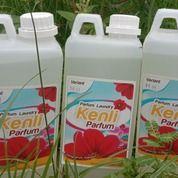 Parfum Laundry Murah (20144759) di Kota Tanjung Balai