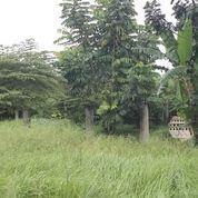Tanah Datar Siap Bangun Luas 1638m Di Parigi Pondok Aren Bintaro (20169999) di Kab. Tangerang