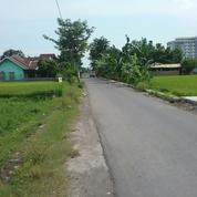 Tanah Strategis Lokasi Dekat Kampus UAD Jogjakarta(F.209) (20192675) di Kota Yogyakarta