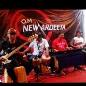 Hiburan Untuk Hajatan /Pernikahan Elekton/Orkes Melayu