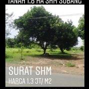 Tanah Subang Nempel Jalan Raya Purwadadi Belendung Purwadadi Kab Subang Propinsi Jawa Barat (20263207) di Kab. Subang