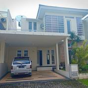 Rumah Disewa Full Furnise Jember (20273799) di Kab. Jember