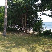 Tanah Los Pantai Di Jembrana Bali (20280159) di Kab. Jembrana