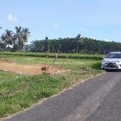 Tanah Kavling Sumberpucung Murah (20349667) di Kab. Malang