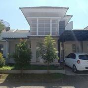 Rumah Minimalis Lokasi Strategis Tengah Kota (20351715) di Kab. Jember