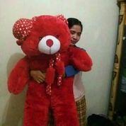 Boneka Teddy Bear/Beruang Jumbo