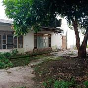 Tanah Raya Brangkal Mojokerto Cocok Untuk Buka Pabrik - The EdGe Bubutan (20386539) di Kota Mojokerto