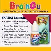 Brainqu Suplemen Otak, Grosir Dan Ecer Di Madiun WA 081234850606 (20392855) di Kota Madiun