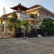 Villa Mewah 2 Lantai Full Furnist Di Tembalang Semarang
