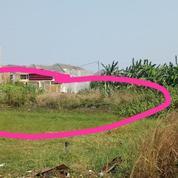 Kavling Jalan Jeruk Wage Sidoarjo (20458847) di Kota Samarinda