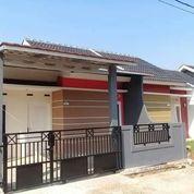 Rumah Subsidi Dp Murah Cicilan Terjangkau (20463159) di Kab. Bogor