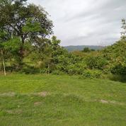 Tanah Di Kawasan Wisata Jogja (20465351) di Kota Yogyakarta