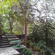 Villa Asri Nan Cantik Di Sedayu Bantul (20526343) di Kab. Bantul