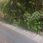 Tanah Pinggir Jalan Pariwisata Sandik (20549631) di Kab. Lombok Barat