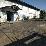 (AJ). Pabrik Daerah Trosobo Bagus Untuk Invest (20560595) di Kota Surabaya