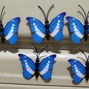 Kupu Kupu Magnet Import Biru,Butterfly Dekorasi Suvenir Hiasan 3D