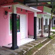 Hunian Pink Dekat Samsat Wates