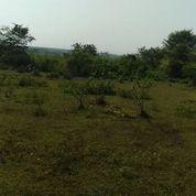 Tanah Kavling Industri 1.2 Ha Kawasan Industri Modern Cikande (20680695) di Kab. Serang