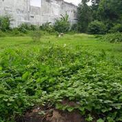 Tanah Kosong Shm Pekarangan Di Timoho Kota Yogyakarta