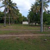 Tanah 2.000m2 Dekat Pantai Gili Trawangan Lombok (20753447) di Kota Mataram