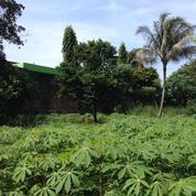Tanah Strategis Di Pinggir Jalan Cibinong Jalan Raya Jakarta Bogor