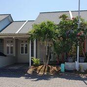 Minimalist Stylish House Sukolilo Dian Regency Kondisi Siap Huni BEBAS BANJIR (20830307) di Kota Surabaya