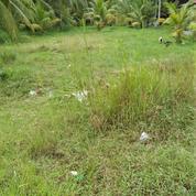 Mempawah, Hilir Kalbar, Tanah Murah Harga Promo, Pontianak (20839651) di Kab. Mempawah