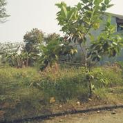 Tanah Kavlin B.U Komplek Islamic Village Kelapa Dua Karawaci (20866331) di Kota Tangerang Selatan