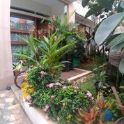 Rumah Bagus Dan Terawat Dijaticempaka Jatiwaringin Pondok Gede Bekasi (20873555) di Kota Bekasi