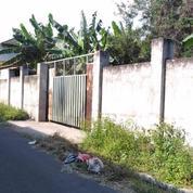 Tanah Strategis Kota Mataram Belakang SMA Negeri 2 Mataram (20890599) di Kota Mataram
