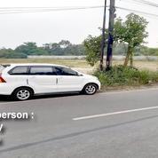 Tanah Harga Ok Banget Satu Hamparan Kosong Di Serang Tangerang (20902271) di Kab. Bekasi