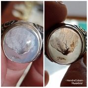 Natural Batu Cincin Gambar Daun Antik (20954239) di Kota Pasuruan