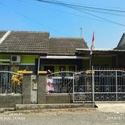 Rumah Murah Dipusat Kota Cianjur (21058551) di Kab. Cianjur