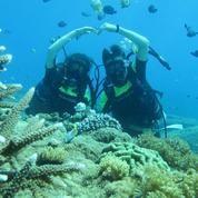 Voucher Quicksilver Cruise Bali + Diving (21066959) di Kota Denpasar