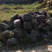 Unit Terbatas Tanah Di Saxophone River Village Malang