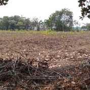 Tanah Industri Ciruas 200 Ha Bisa Partial Kab Serang Banten (21109163) di Kab. Serang