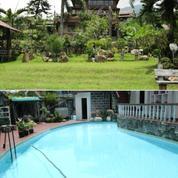 Villa Puncak Private Swimming Pool, Lahan Luas Dan Penghasilan Besar Tiap Bulannya