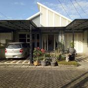 Rumah Cantik Lingkungan Nyaman, Jember Dekat Transmart