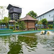 Gedung Serba Guna Dengan Tanah Luas 2400 Jalan Palagan (21174895) di Kab. Sleman