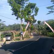 Kavling Teras Jember Tahap 2 Lokasi Strategis Dekat Kota (21175671) di Kab. Jember