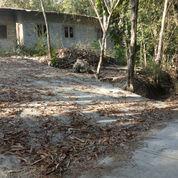 Tanah Pekarangan Dekat Sawah 2300 M2 Kasongan Bantul (21189147) di Kab. Bantul