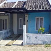 Rumah Sedehana Dan Asri (21212751) di Kota Malang